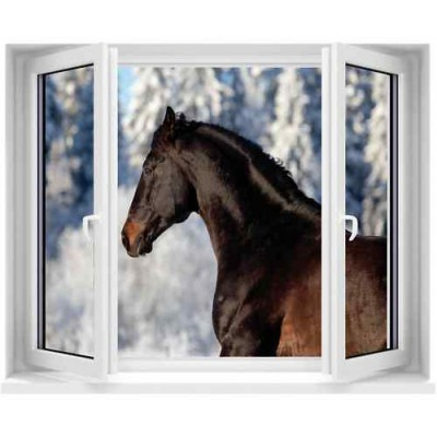 Sticker trompe l il fen tre cheval 100x120 cm stickersmania for Fenetre 90x60
