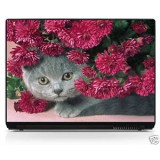 Sticker pc portable laptop skin réf 108