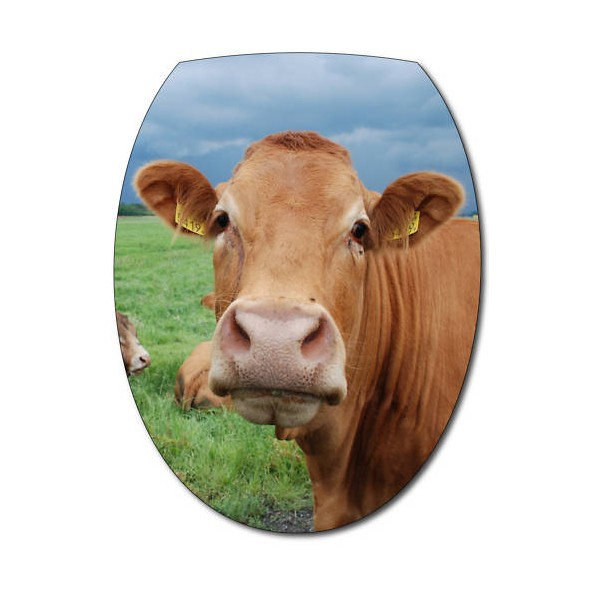 Sticker abattant wc t te de vache - Photo vache rigolote ...